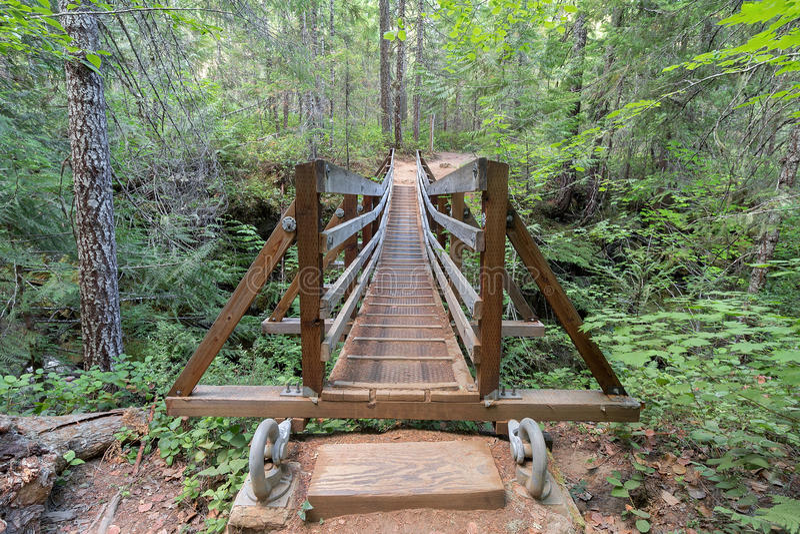 Pont suspendu au-dessus de crique Front View d'automnes photo stock