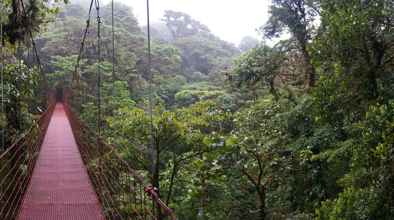 Pont suspendu chez Monteverde photographie stock