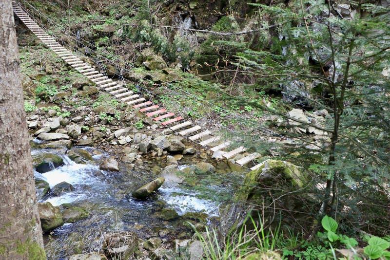 Pont suspendu en bois dans les montagnes images libres de droits