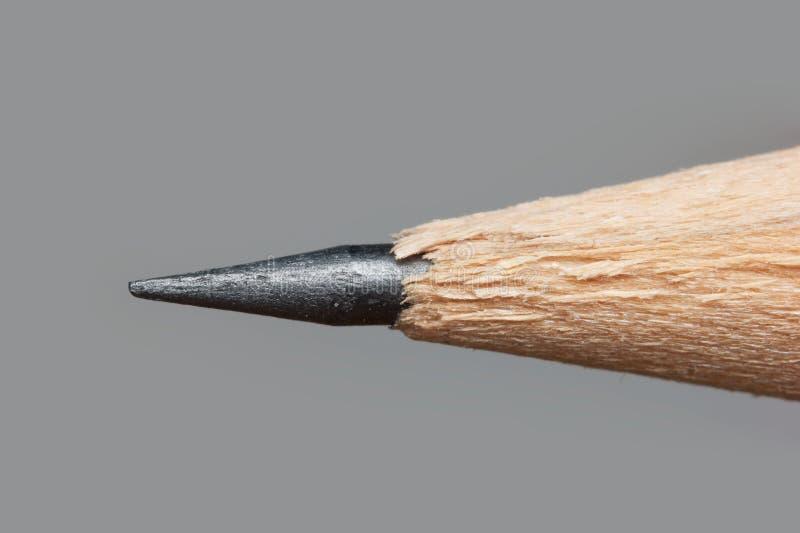 Ponta afiada de um lápis imagem de stock