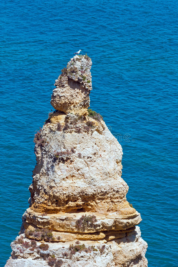 Download Ponta Da Piedade & X28; Lagos Algarve, Portugal& X29; Arkivfoto - Bild av vatten, natur: 76702518