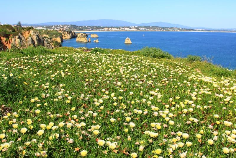 Ponta de Piedade côte à Lagos, Algarve au Portugal image libre de droits