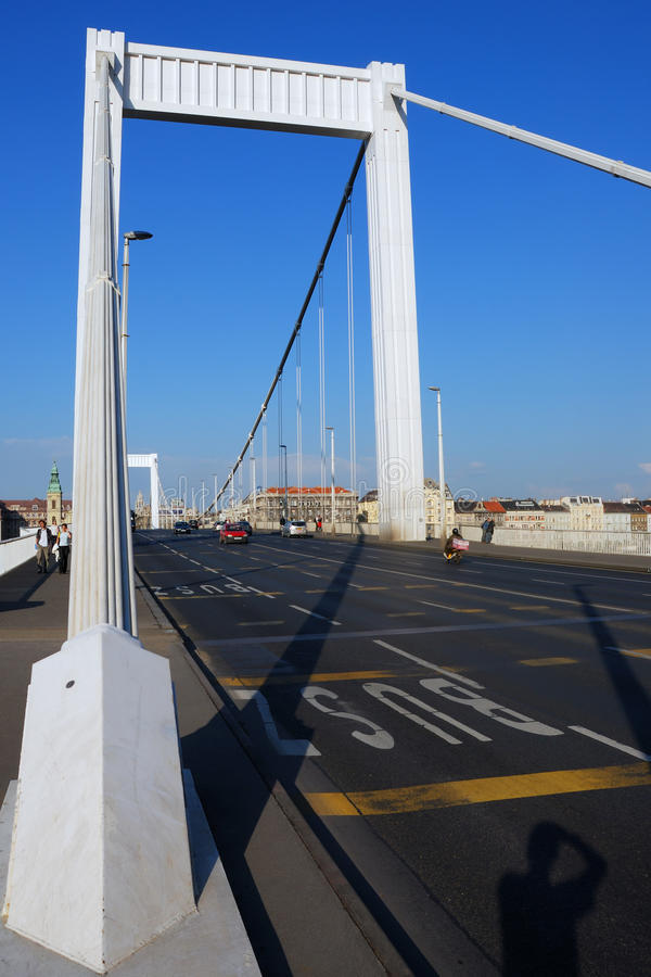 Ponte 9. de Elizabeth. imagens de stock royalty free