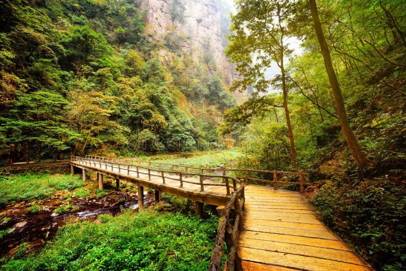 Ponte amarela sobre o rio da montanha entre madeiras e rochas fotos de stock royalty free