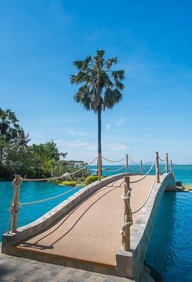 A ponte através das palmeiras leva ao mar, ao céu e à linda natureza como o céu foto de stock