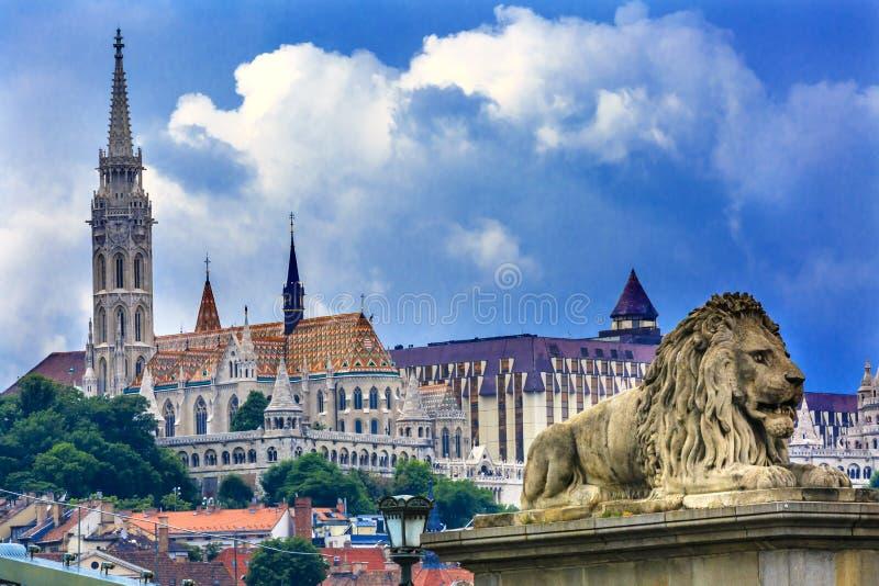 Ponte a catena Lion Matthias Church Budapest Hungary immagini stock libere da diritti