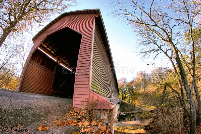 Ponte coberta do campo fotografia de stock royalty free