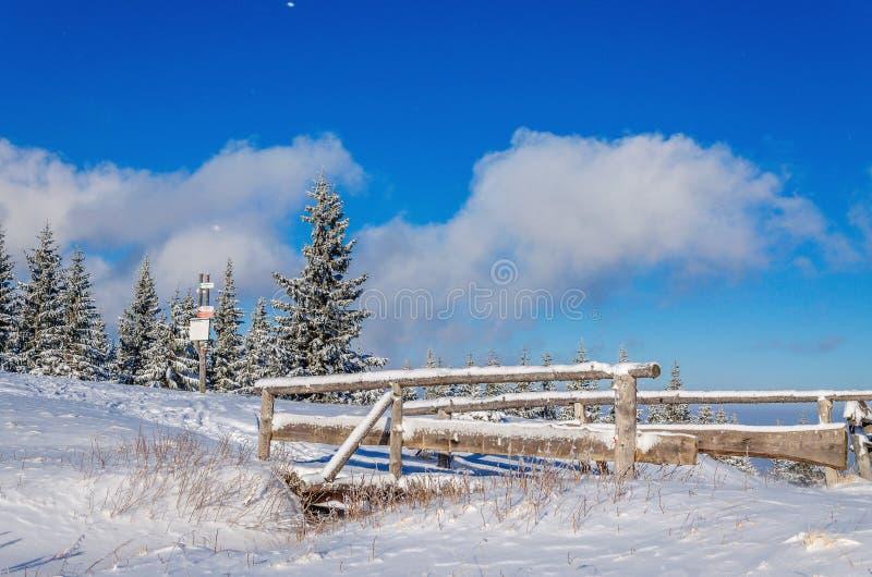 Ponte coberto de neve na fuga do turista fotografia de stock