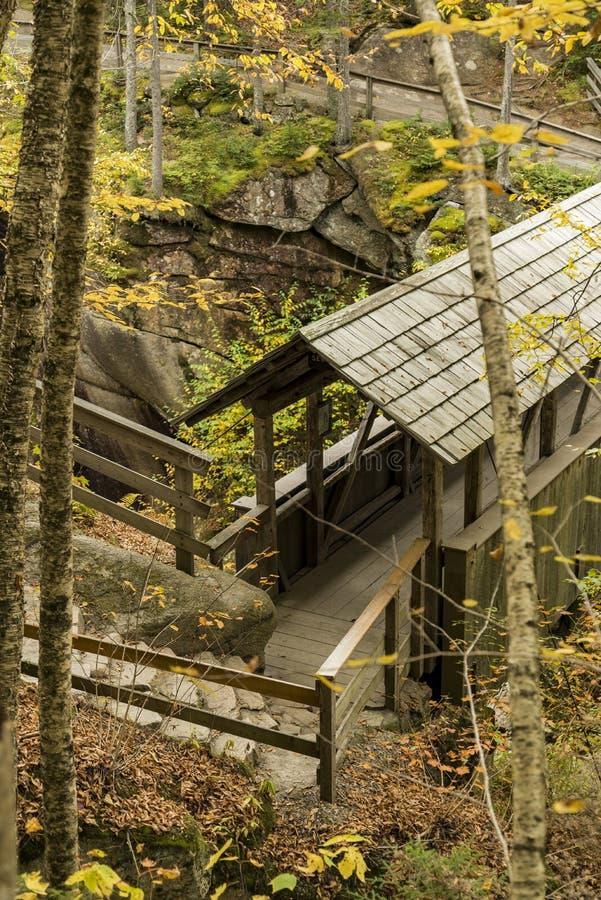 Ponte coperto del pino della sentinella nel parco di stato della tacca di Franconia immagini stock libere da diritti