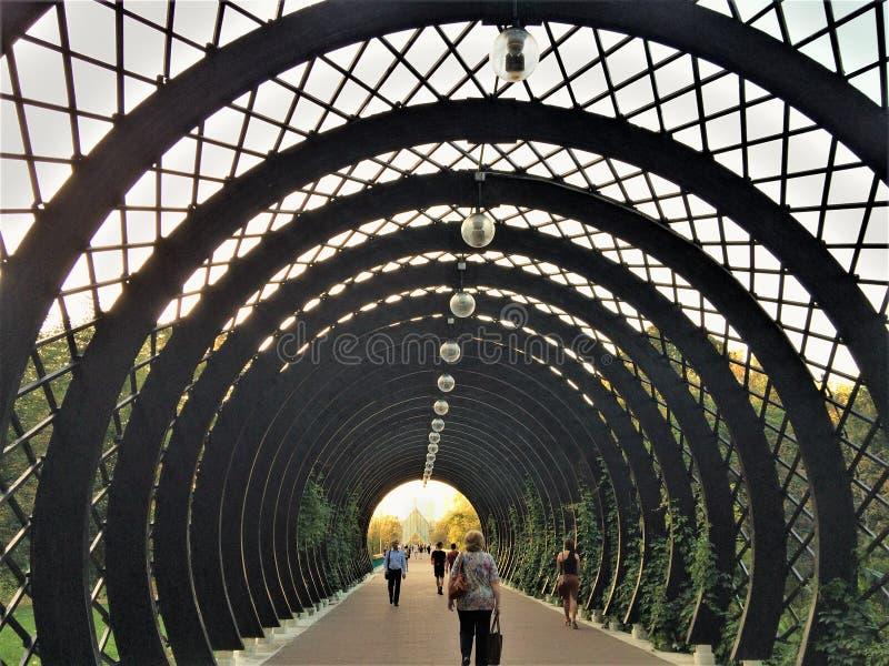 Ponte criativa fotografia de stock royalty free