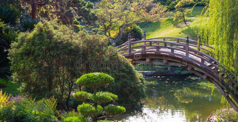 Ponte curvo di legno stagionato sopra uno stagno fotografia stock