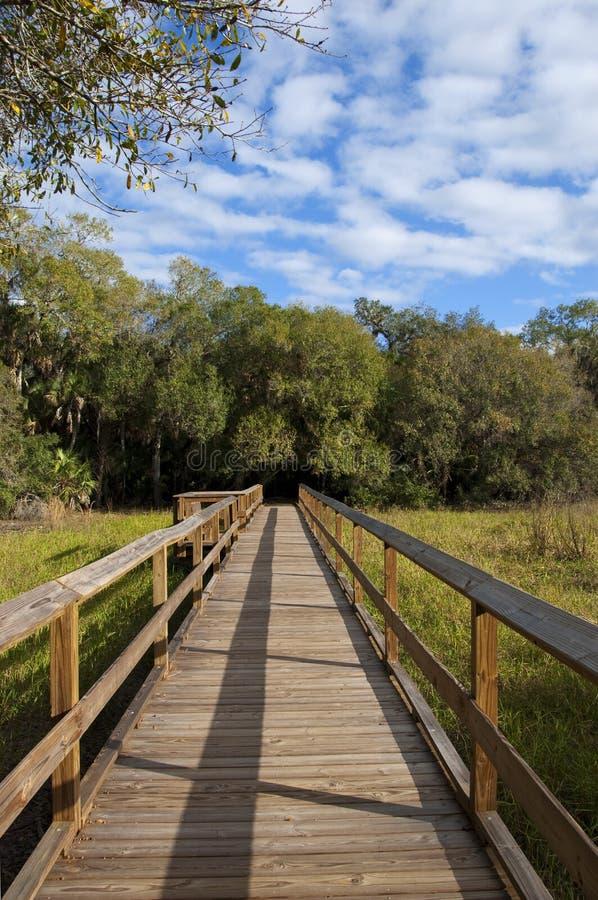 Ponte da caminhada da natureza foto de stock