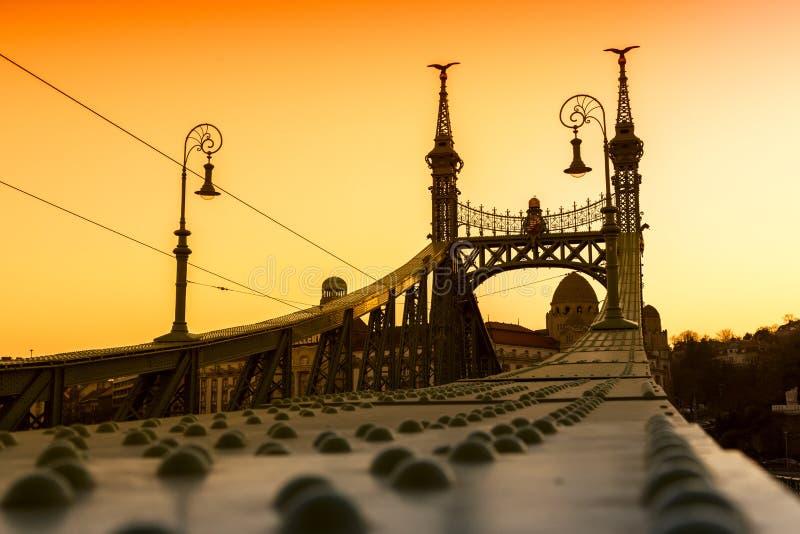 Ponte da liberdade - Budapest, Hungria imagem de stock royalty free