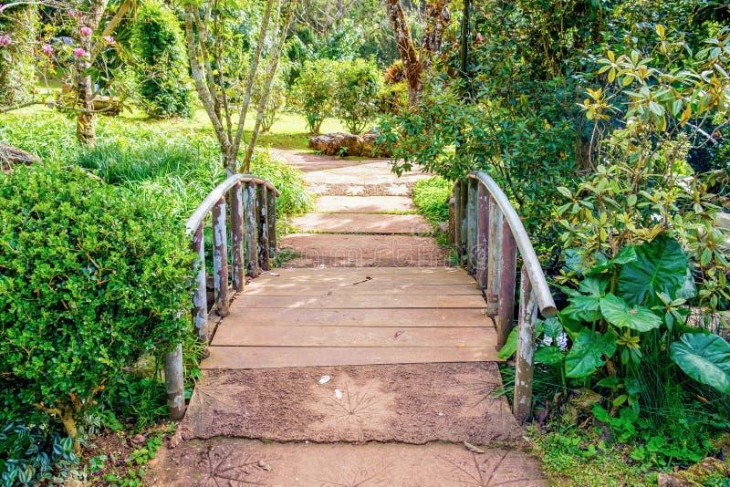 Ponte da passagem silvestre imagens de stock royalty free