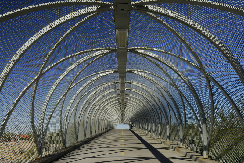 Ponte da serpente de Tucson imagem de stock royalty free