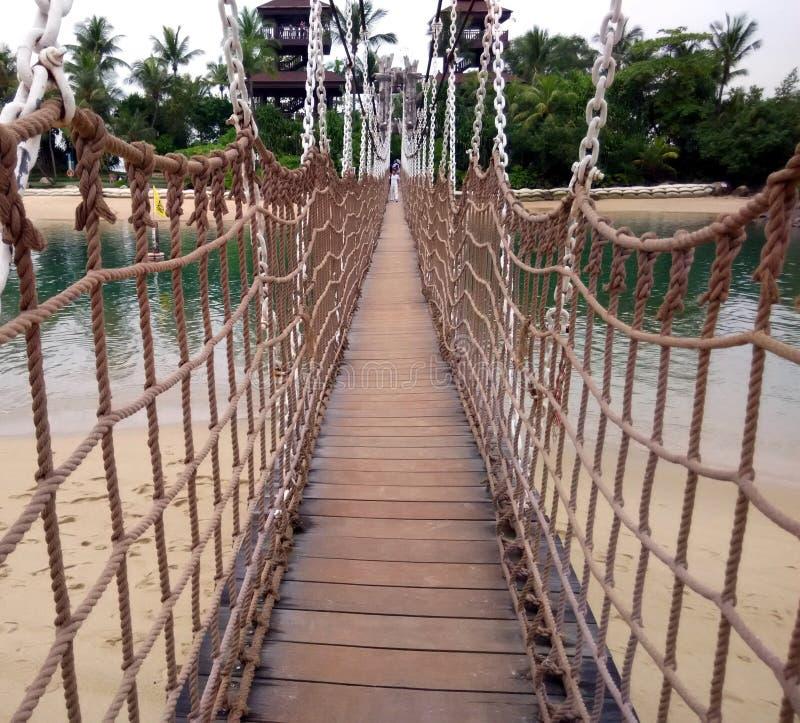Ponte da suspensão Bridge fotos de stock