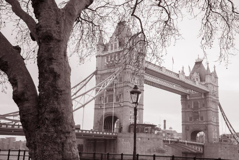 Ponte da torre em Londres, Inglaterra, Reino Unido fotos de stock