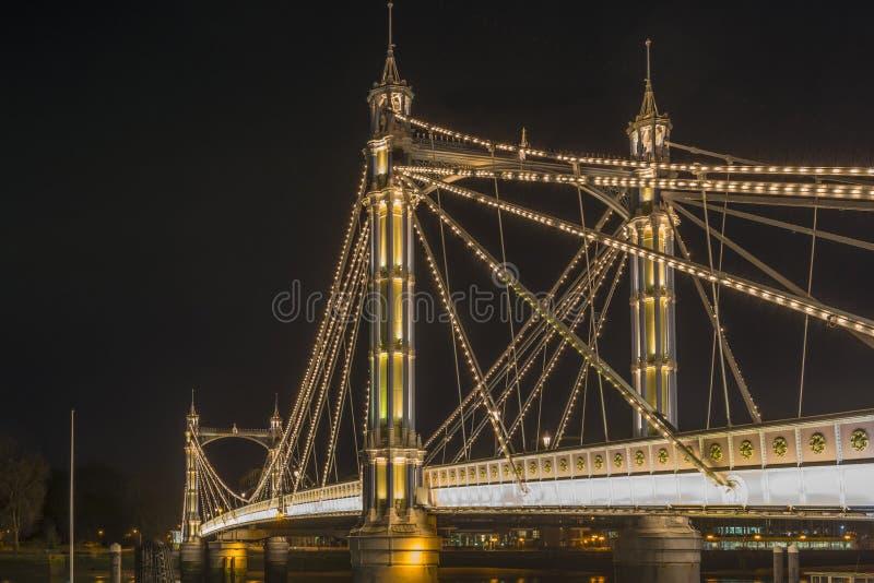 Ponte de Albert na noite imagem de stock