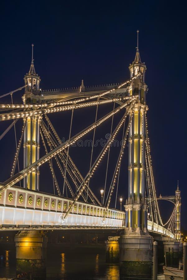 Ponte de Albert na noite imagens de stock royalty free