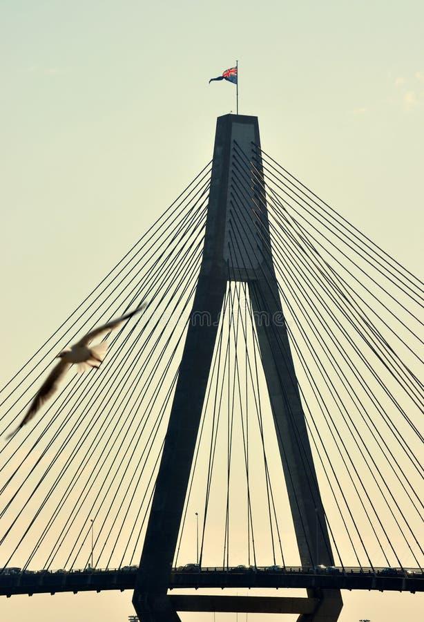 Ponte de Anzac foto de stock royalty free