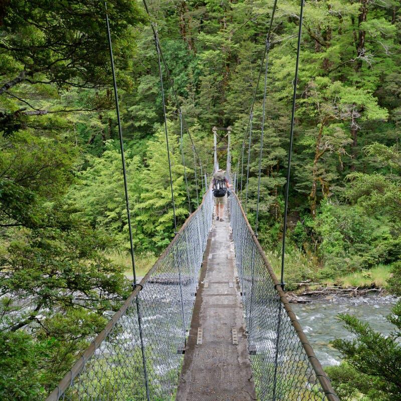 Ponte de balanço do desfiladeiro do canibal, St James Walkway, Nova Zelândia foto de stock
