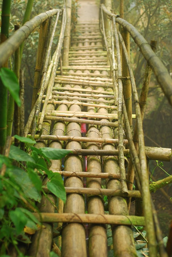 Ponte de bambu imagem de stock royalty free