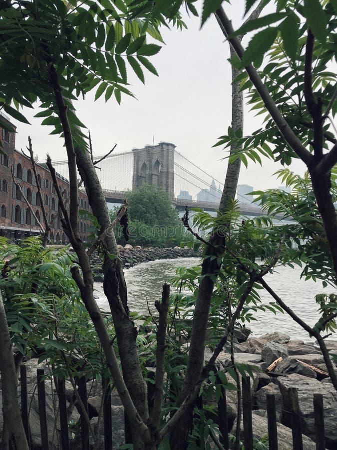 Ponte de Brooklyn e a vista de Manhattan imagens de stock