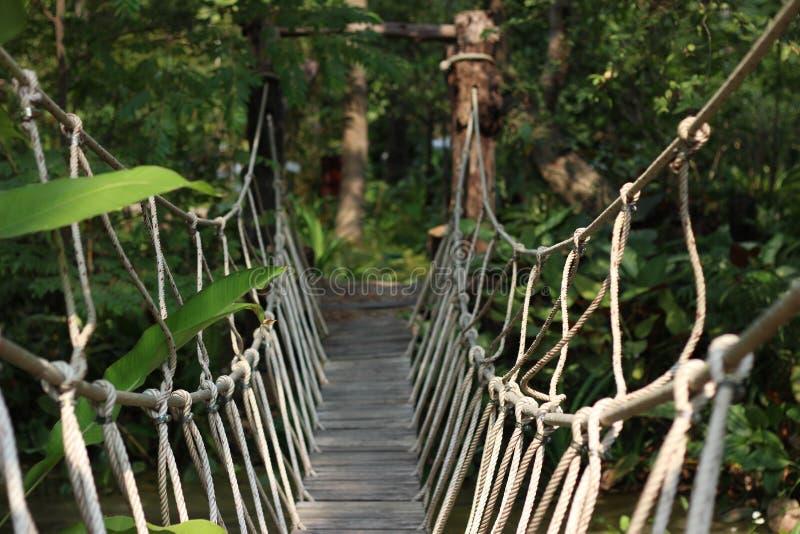 Ponte de corda fotografia de stock royalty free