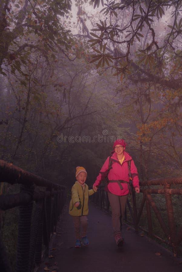 Ponte de cruzamento fêmea nova do caminhante e do filho na floresta enevoada imagem de stock