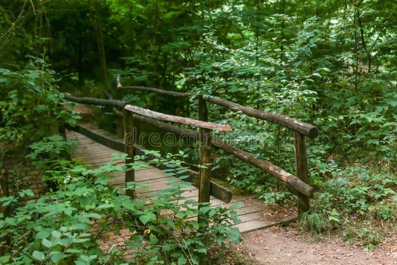 Ponte de madeira fotos de stock royalty free