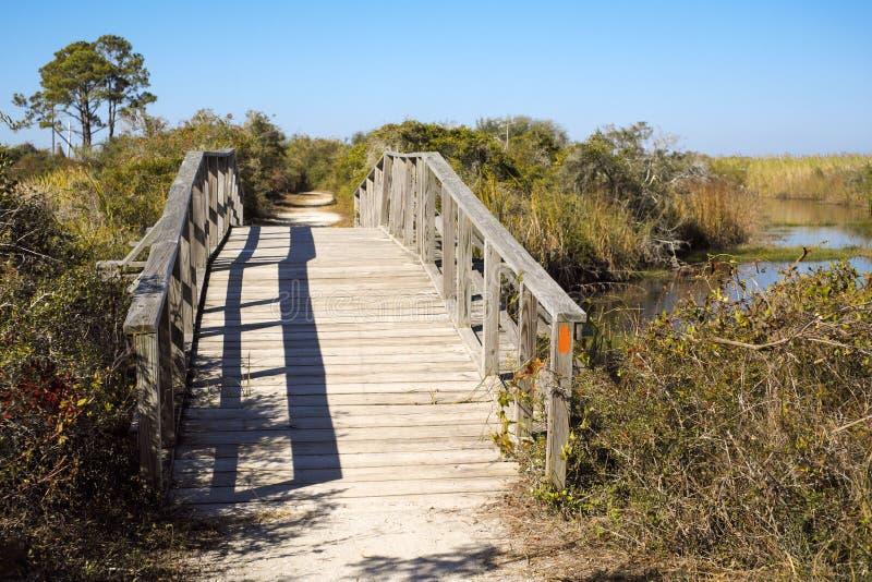 Ponte de madeira arqueada do pé no pantanal de Florida fotos de stock