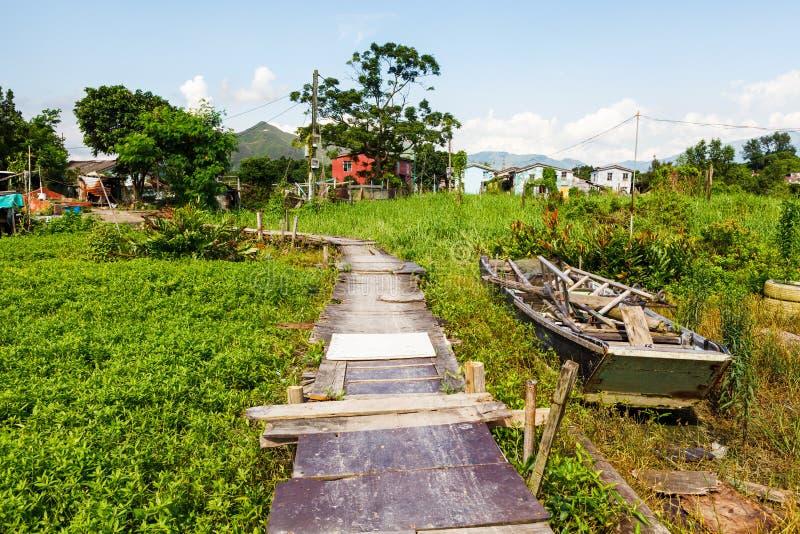Ponte de madeira com o reflorestamento dos manguezais foto de stock