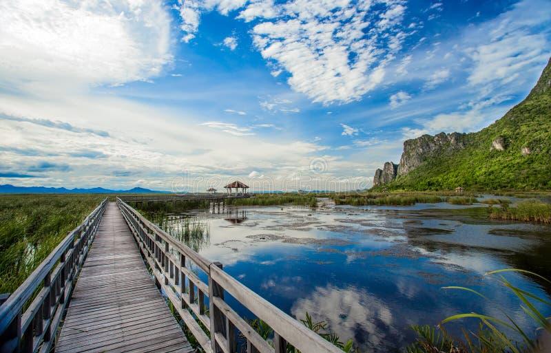 A ponte de madeira de fuga de natureza foto de stock royalty free