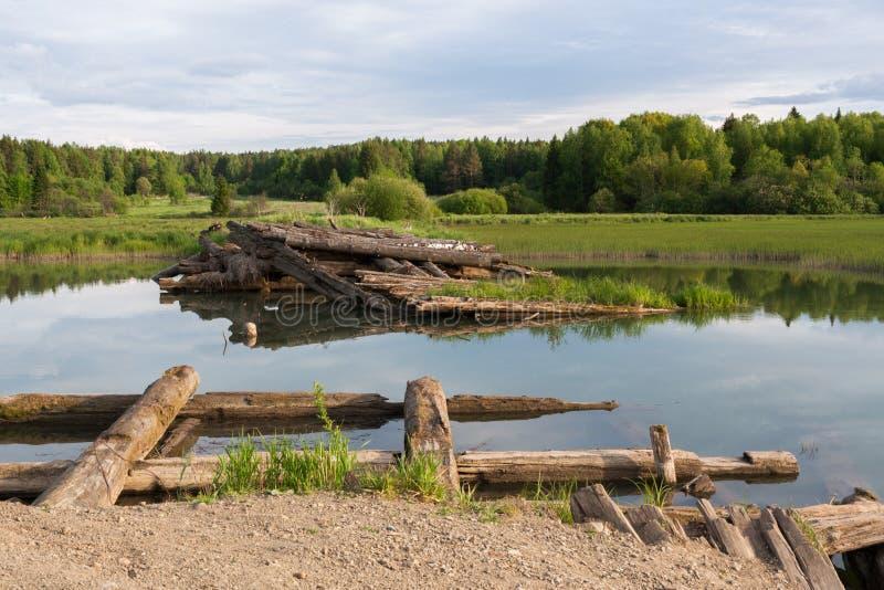 Ponte de madeira destruída através do rio perto da floresta fotografia de stock royalty free