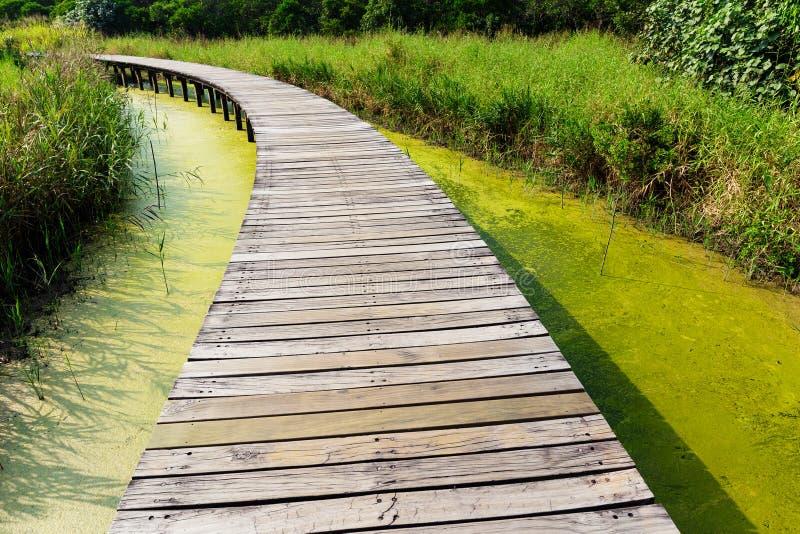 Ponte de madeira do pé imagens de stock