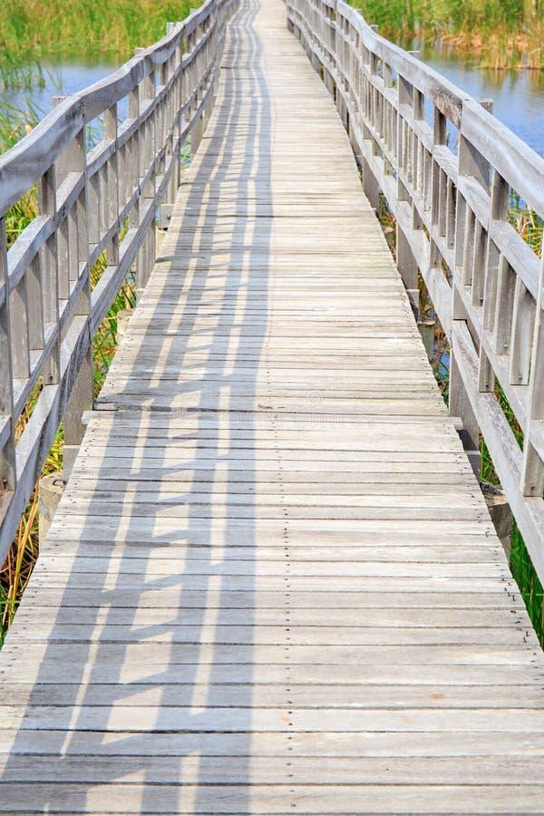 Ponte de madeira do trajeto da passagem ou da caminhada no pântano ou no rio do lago foto de stock royalty free