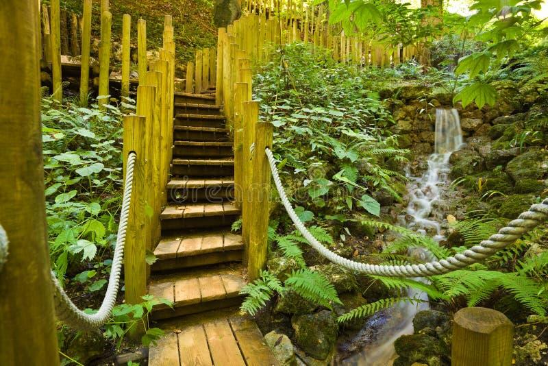 Ponte de madeira e pouca queda da água foto de stock royalty free