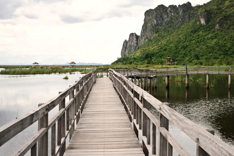 Ponte de madeira em Tailândia foto de stock royalty free