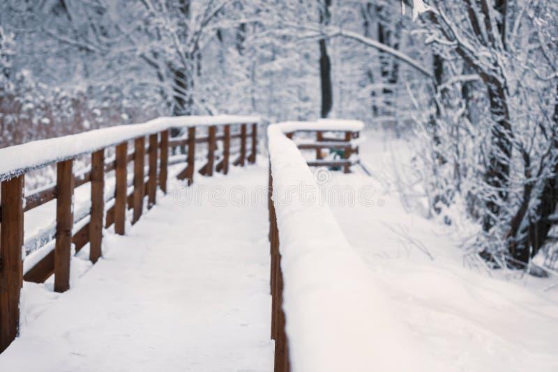 Ponte de madeira em um dia nevado do inverno, opinião de perspectiva, sem povos fotos de stock