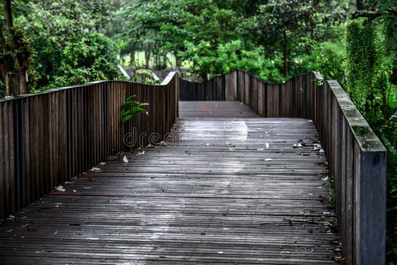 Ponte de madeira de enrolamento Amidgt imagens de stock royalty free