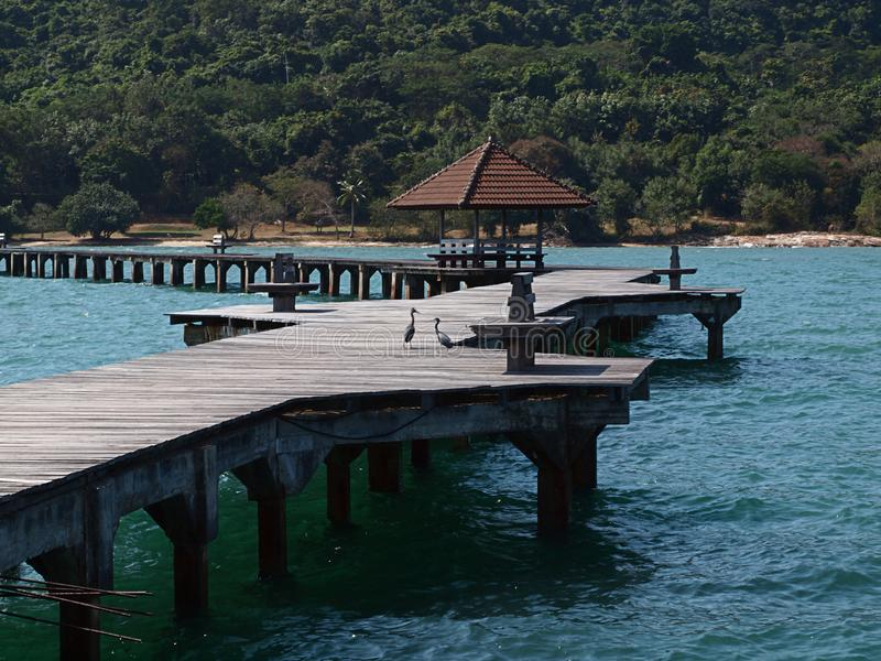 Ponte de madeira longa fotos de stock royalty free