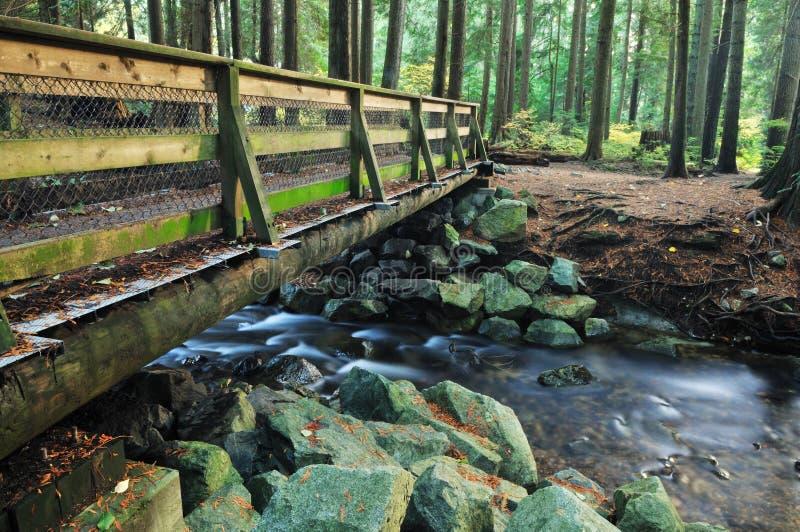 Ponte de madeira na floresta do vale de Lynn fotografia de stock royalty free