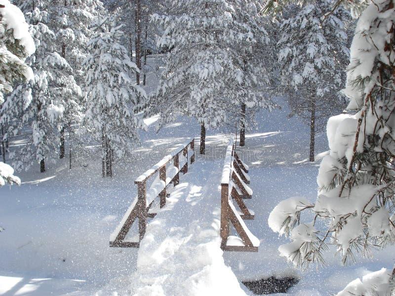 Ponte de madeira na neve foto de stock