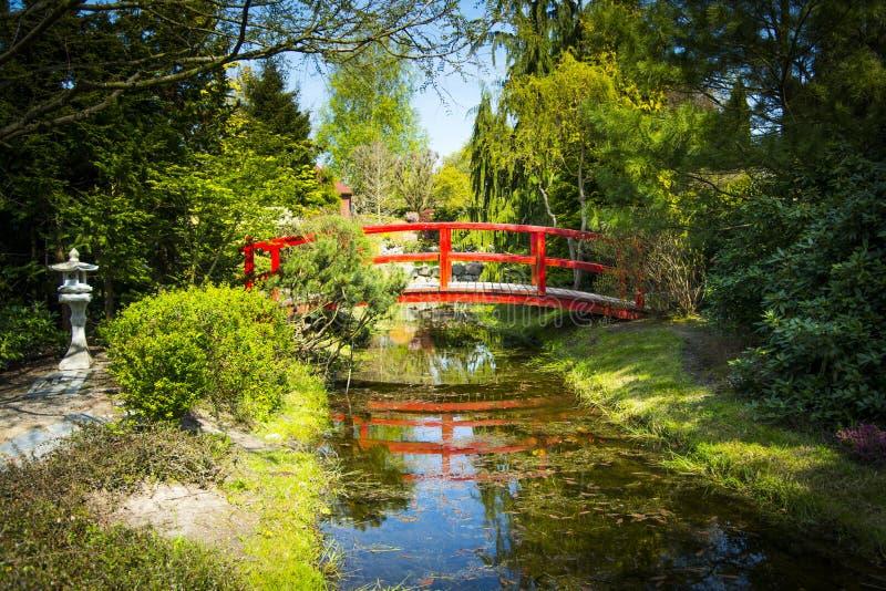Ponte de madeira no jardim japonês fotos de stock royalty free