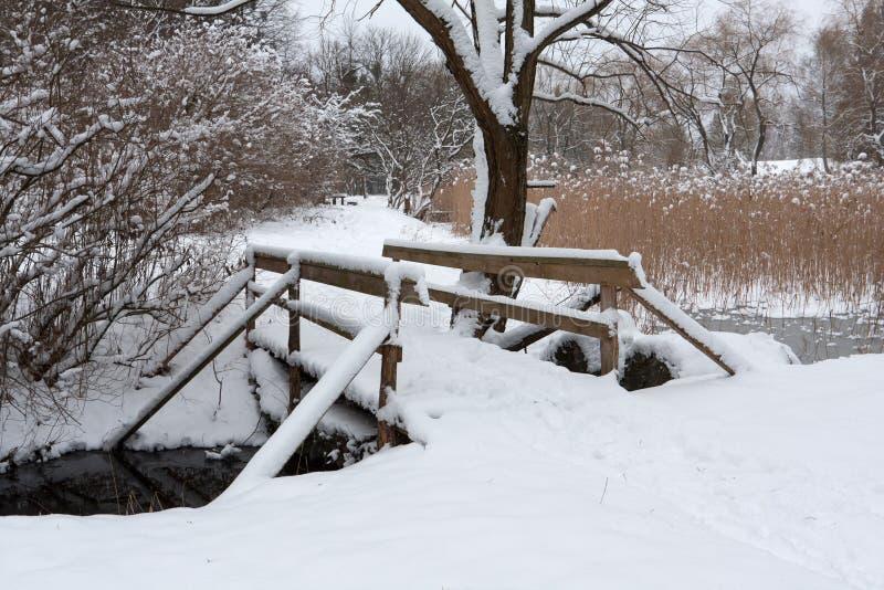 Ponte de madeira no parque foto de stock royalty free