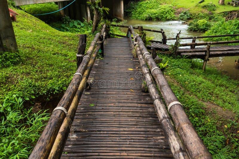 Ponte de madeira para a floresta imagens de stock