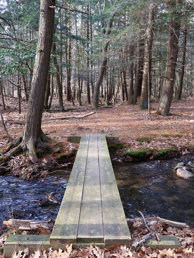 Ponte de madeira simples da prancha na floresta imagem de stock royalty free