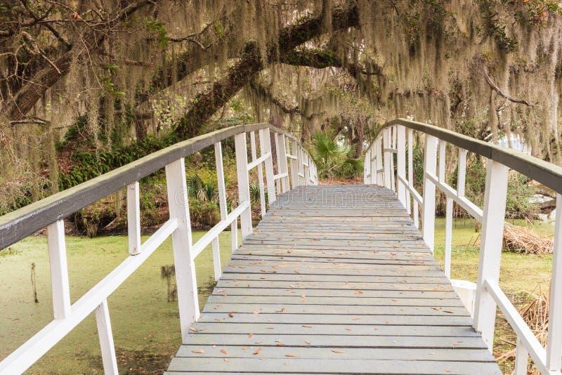 Ponte de madeira sobre o pântano em South Carolina fotos de stock royalty free