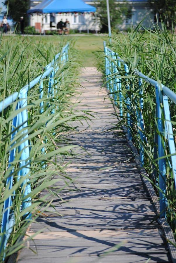 Ponte de madeira sobre o rio imagem de stock