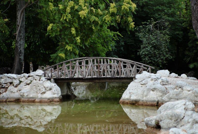 Ponte de madeira velha no parque. fotos de stock royalty free